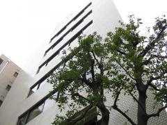 東京商科・法科学院専門専門学校