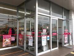 ザ・ダイソー 新津程島SC店