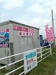 館山海中観光船