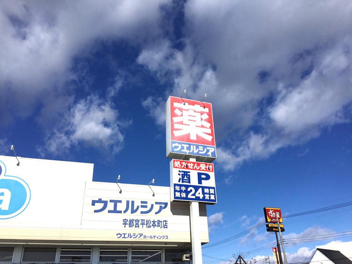ウエルシア 宇都宮平松本町店