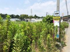 「戸崎交差点」バス停留所
