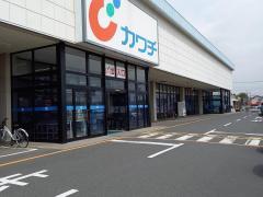 カワチ薬品 竜ヶ崎店