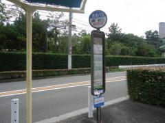 「緑町」バス停留所