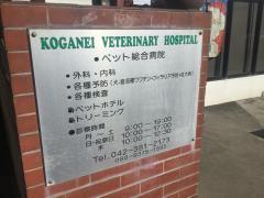 小金井獣医科病院