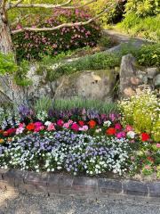 湧永満之記念庭園併設薬用植物園