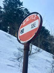 「桂坂」バス停留所