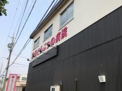 駿河どうぶつの病院