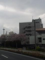東海大学熊本キャンパス