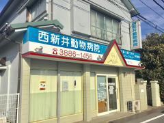 西新井動物病院