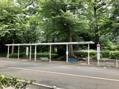 「武蔵野市役所前」バス停留所