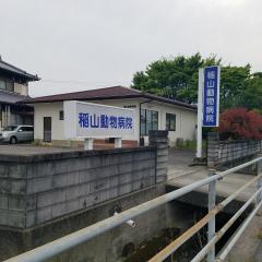 稲山動物病院