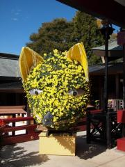 笠間稲荷の菊祭り