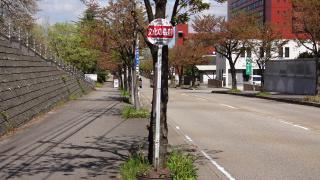 「文化の森前」バス停留所