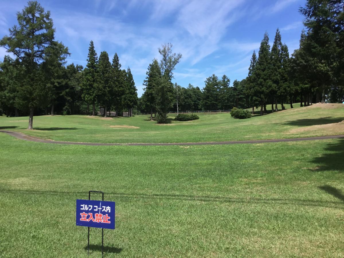 アパ リゾート 上越 妙高 の 森 ゴルフ コース