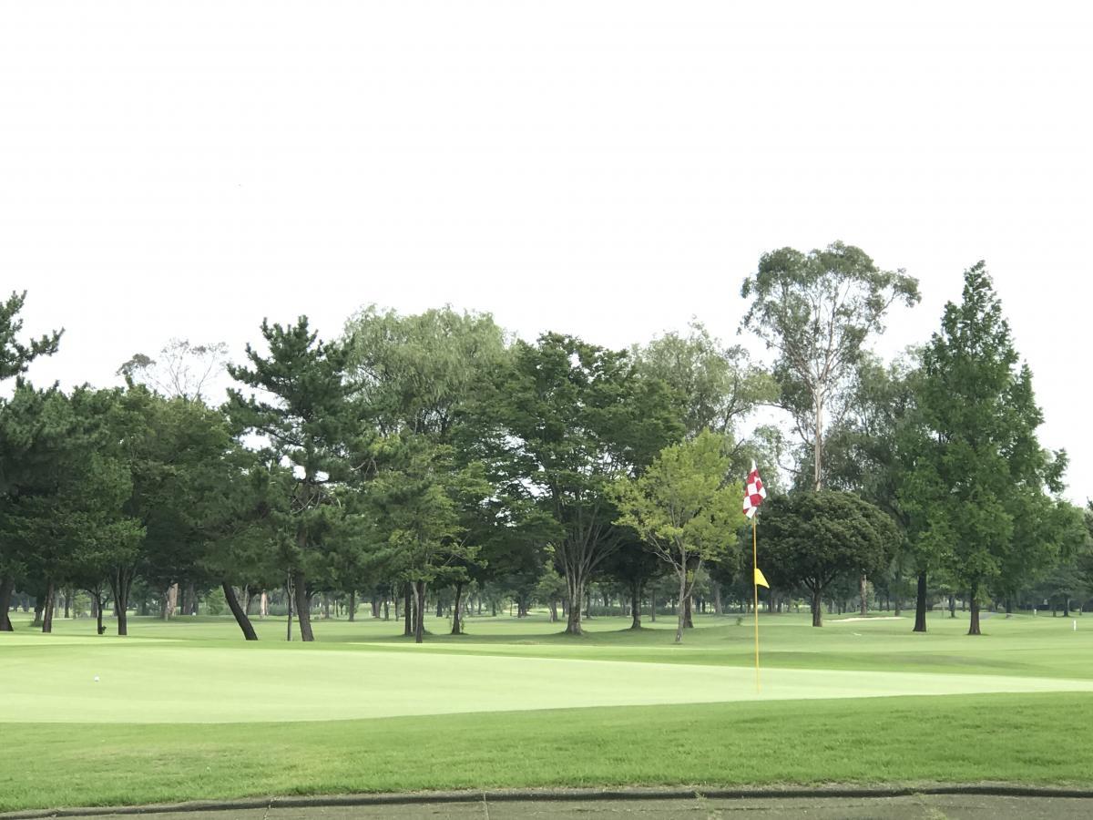 場 板倉 ゴルフ