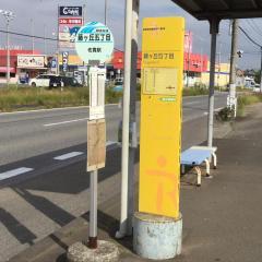 「藤ケ丘五丁目」バス停留所