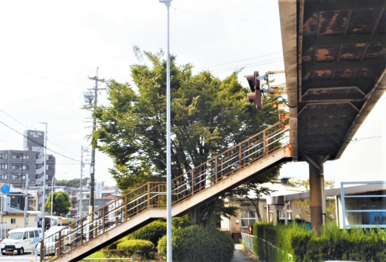 歩道橋からの街園