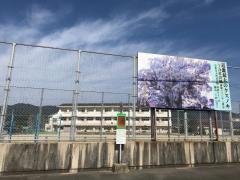 「笠田小学校前」バス停留所