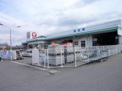 コメリハード&グリーン 峰浜店