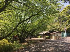 走井山公園