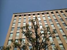 帝京平成大学大学院