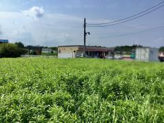 セイコーマート 城里石塚店