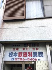 松本獣医科病院