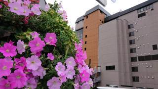 ザ レイクビュー TOYA 乃の風リゾート