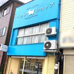 マリ・マエダ・ドッグスタジオ