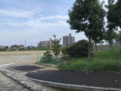 伏石中央公園