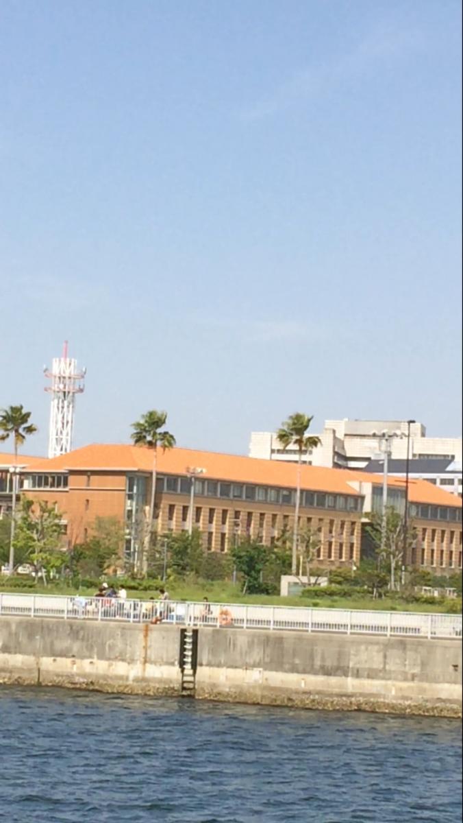 大学 兵庫 医療