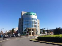 日本芸術高等学園