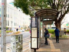 「渋谷区役所」バス停留所