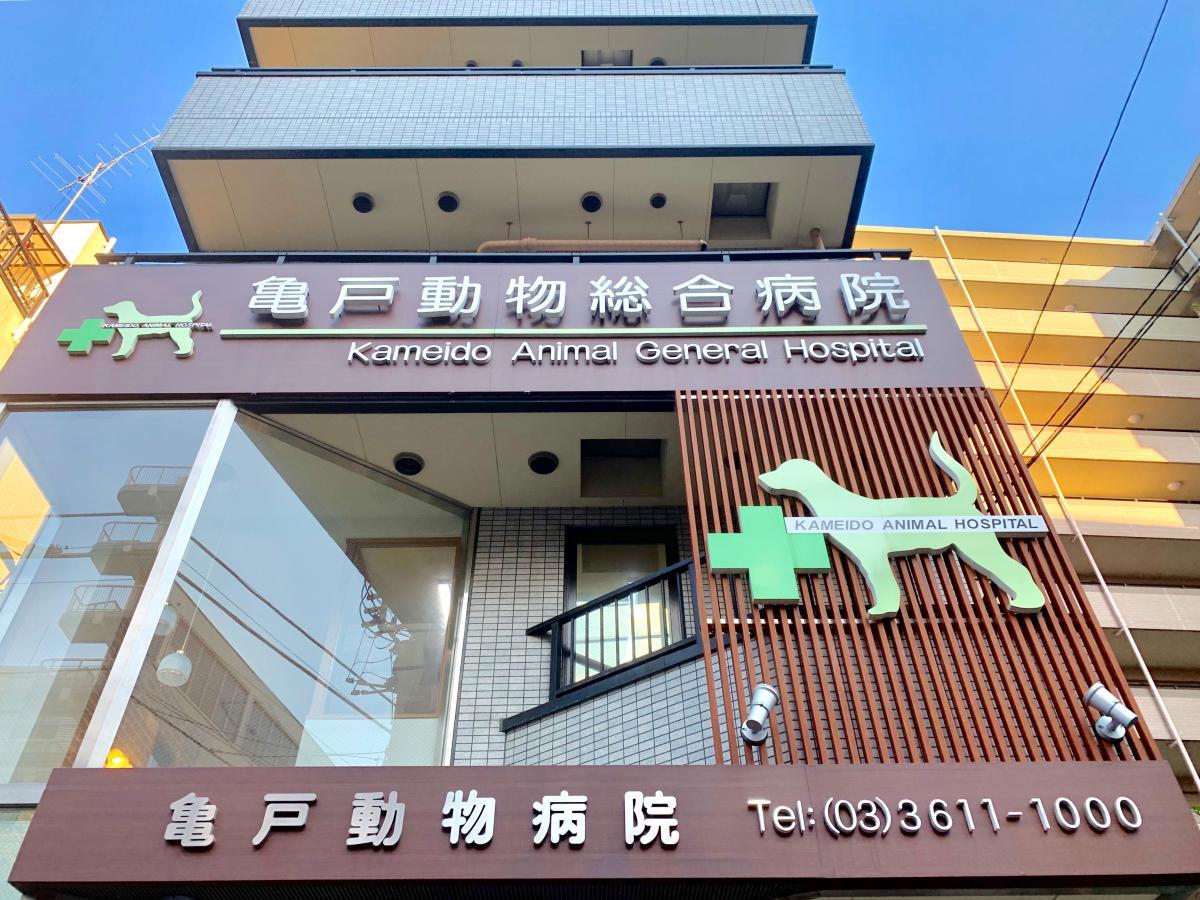 病院 亀戸 動物