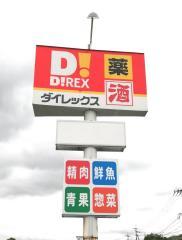 ダイレックス 枕崎店