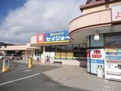 ココカラファイン・くすりセイジョー 栃木烏山店