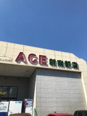 イワサキ・エース新南部店