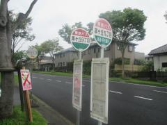 「皐ケ丘9」バス停留所