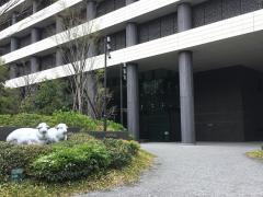 楽天損害保険株式会社 大阪支店