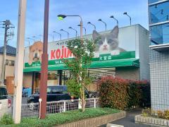 ペットの専門店コジマ 大宮店