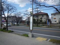 「稲葉町三丁目」バス停留所