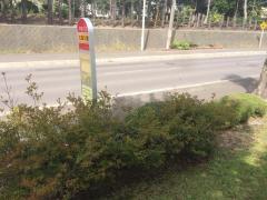 「広島公園」バス停留所