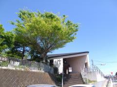 日本ルーテル告白教会