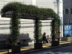 「東京女子医大前」バス停留所