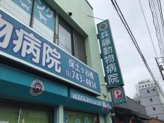 兵藤動物病院保土ヶ谷橋