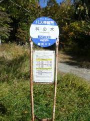 「科の木」バス停留所