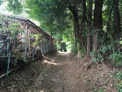 西新井ふるさとの緑の景観地